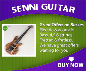senni guitar bass 3